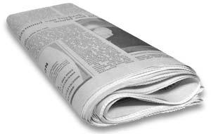 Zeitung - BeneWiki in der Presse